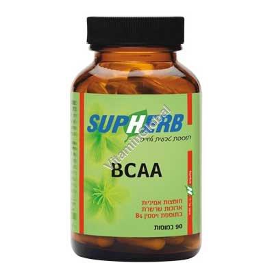 BCAA חומצות אמיניות מסועפות 90 כמוסות - סופהרב
