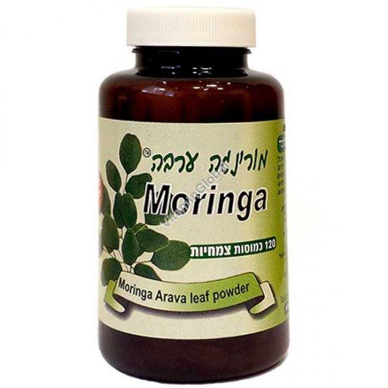 צמח מורינגה 120 כמוסות - מורינגה ערבה