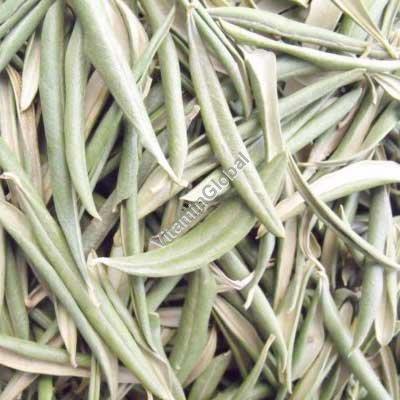 עלי זית מיובשים 50 גרם - אלדר