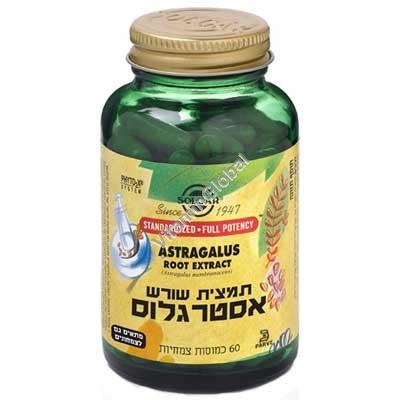 תמצית שורש אסטרגלוס 60 כמוסות צמחיות - סולגאר