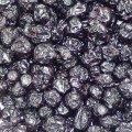 אוכמניות פירות 50 גרם - הרבה סנטר