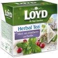 חליטת נענע, חמוציות וצמחים 20 שקיות תה פירמידה - לויד