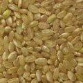 אורז מלא אורגני 500 גרם - תבואות