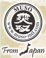 מוסו מיפן - מיסו אורגני