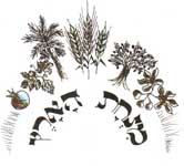 מנחת הארץ - קמחים אורגניים